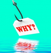 """Asking """"Why?"""" isn't just for kids."""